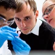 Group of scientists inspecting specimen