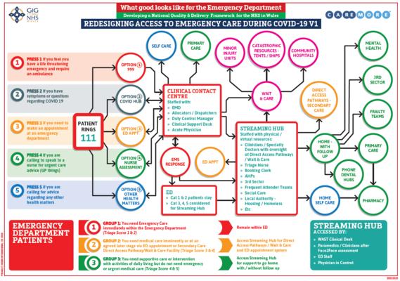 Welsh Access Model Image