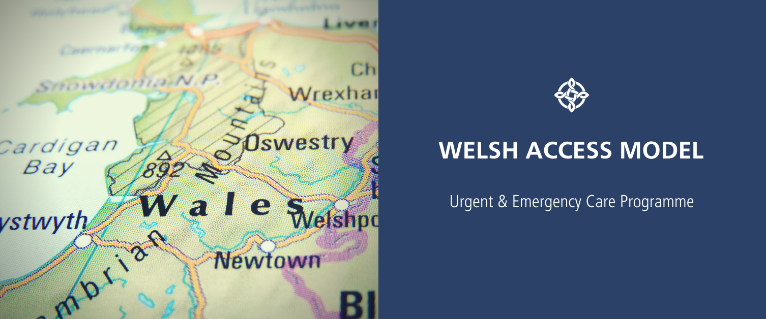 Welsh Access Model Placeholder