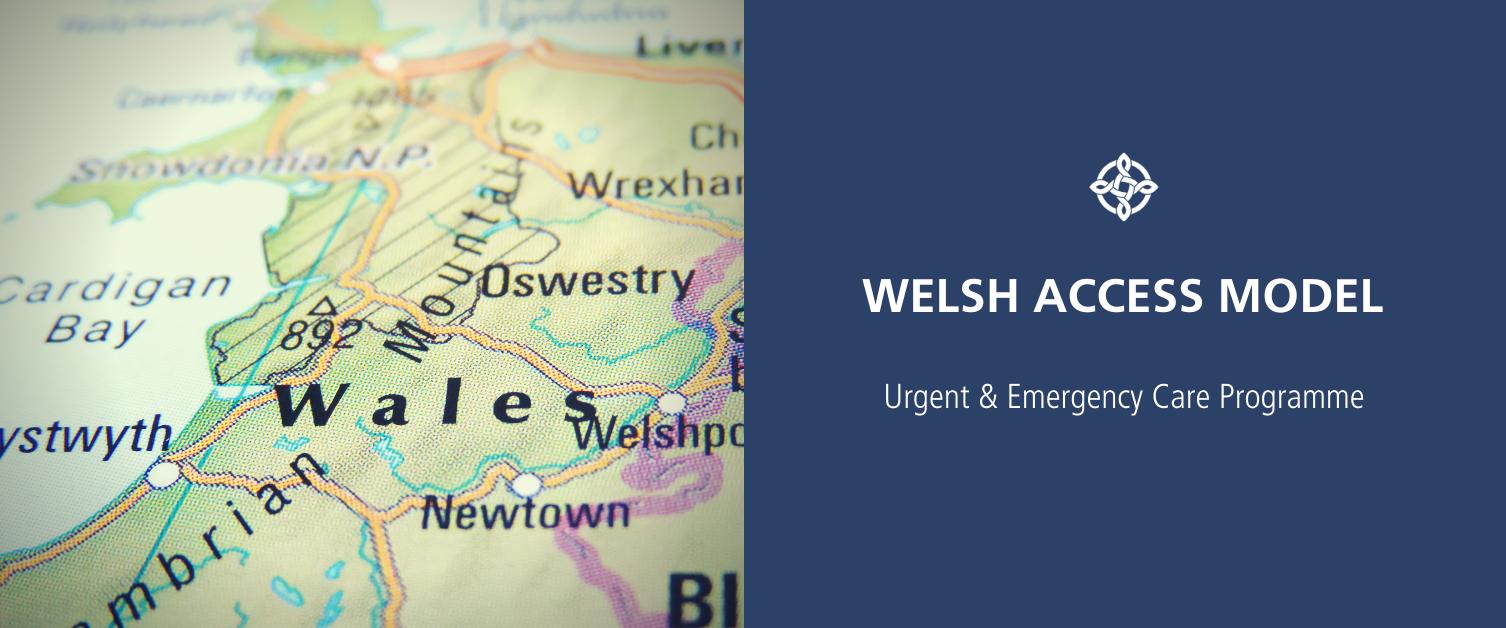 Welsh Access Model Placeholder